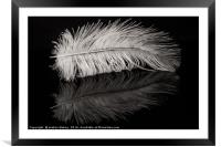 Feather Balanced on a Edge, Framed Mounted Print