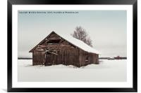 Abandoned Barn House On The Snowy Fields, Framed Mounted Print