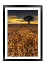 Harvest Time #2, Framed Mounted Print