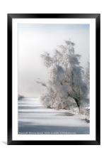 Coated with Icing, Framed Mounted Print
