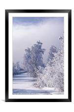 Beneath the Frosty Shroud, Framed Mounted Print