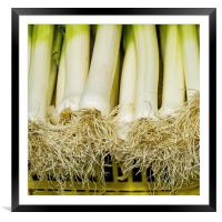 Leeks, Framed Mounted Print