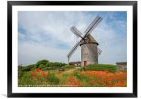 Poppies and Skerries Windmill, Framed Mounted Print