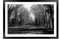 Old Railway Track, Framed Mounted Print
