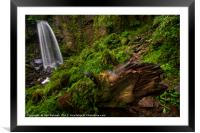 Melincourt Waterfall, Framed Mounted Print