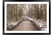 Winter Trail, Framed Mounted Print