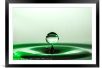 Little green water drop, Framed Mounted Print