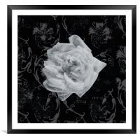 White rose on abstract background, Framed Mounted Print