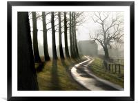 Tree Shadows on the Lane  North Norfolk, Framed Mounted Print