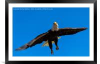 Lift Off, Framed Mounted Print
