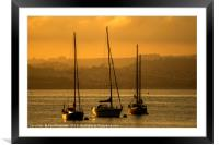 Moored Yachts at Sunset, Framed Mounted Print