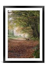 Early Autumn, Framed Mounted Print