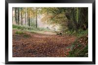 Early Autumn leaf fall, Framed Mounted Print