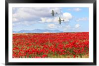 Poppy field and clouds, Granada Province, Spain, Framed Mounted Print