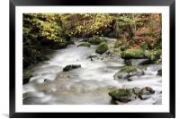 Stock Ghyll #1, Framed Mounted Print