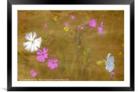 Wildflowers in Abstract, Framed Mounted Print