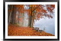 Misty lake shore and autumn woods, Framed Mounted Print