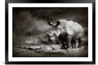 White Rhinoceros, Framed Mounted Print