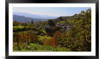 Looking Across Barril de Alva, Portugal, Framed Mounted Print