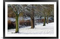 SNOWSCENE AT THE LOCAL PARK, Framed Mounted Print