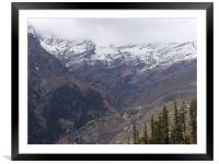 Snowy Snap!!!, Framed Mounted Print