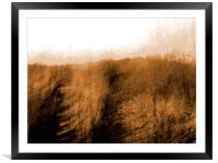 Waiting , Framed Mounted Print