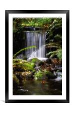Mill Race at Rivelin Valley , Framed Mounted Print