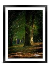 Toned Buxton Trees, Framed Mounted Print