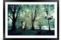 last song, Framed Mounted Print
