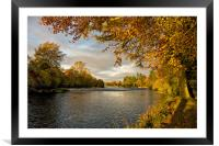 Autumn by the River Ness, Framed Mounted Print