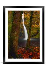 Surrounded by the Season, Framed Mounted Print