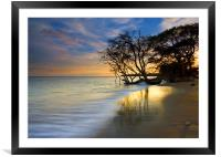 Reflections of Paradise, Framed Mounted Print