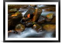 In the Midst of it All, Framed Mounted Print