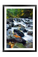 Flow of Autumn, Framed Mounted Print
