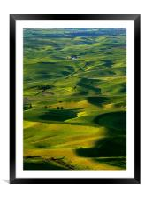 Palouse Morning, Framed Mounted Print