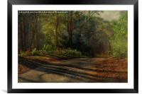 Pond Hills Road 3, Framed Mounted Print