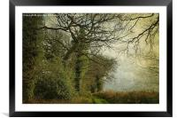 Walking In Hunny, Framed Mounted Print