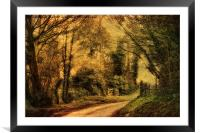 Hunny Road, Edgefield 4a, Framed Mounted Print