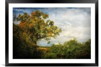 Bunkers Hill 40, Framed Mounted Print
