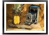 Polaroid and Pineapple , Framed Mounted Print