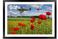 Spitfires and Poppy field, Framed Mounted Print