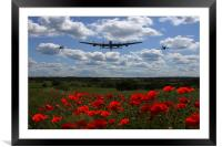 Warbirds and poppy fields, Framed Mounted Print