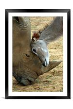 Head massage!, Framed Mounted Print
