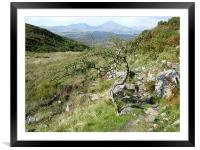 The Old Man of Coniston , Framed Mounted Print