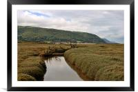 Sparkhayes Marsh, Framed Mounted Print