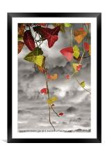 Colour Me Autumn, Framed Mounted Print