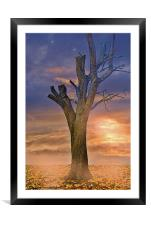 Autumn Sunset Glow, Framed Mounted Print