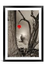 Colour Me Red, Framed Mounted Print