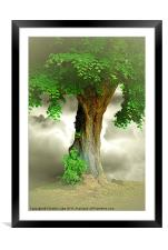 Lonely Tree, Framed Mounted Print
