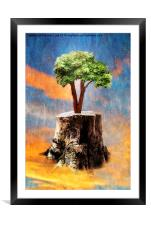Rise From the Ashes, Framed Mounted Print